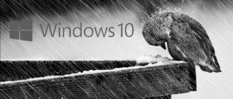 Черно-белый Windows 10