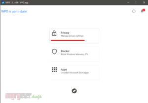 Раздел Privacy в WPD